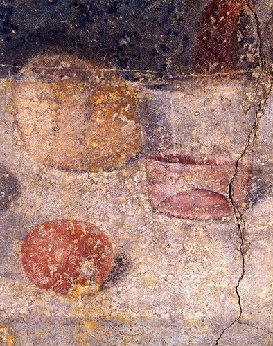 particolare della tavola durante il restauro di Pinin Brambilla Barcilon
